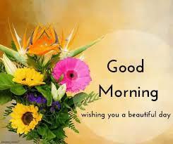 150 beautiful good morning images