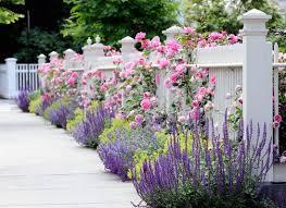 Edging And Border Plants In Landscaping Cottage Garden Gorgeous Gardens Garden Design