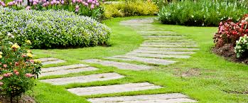How To Find The Best Landscaping Company In Dubai?