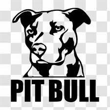 Bulldog American Pit Bull Terrier Emblem Decal Sticker Orange White Green Flag Badge Transparent Png