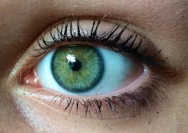 صور عيون خضر جمال العيون الخضراء مساء الورد