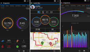 Garmin Connect Mobile brings its fitness tracking to Windows 10 PC ...