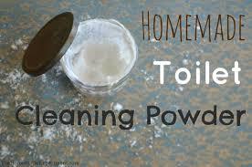 homemade diy toilet bowl cleaner