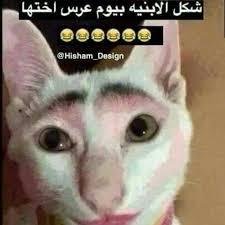ضحك و قصف جبهات بنات الصفحة الرئيسية فيسبوك