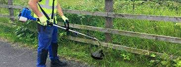 How To Use Your Grass Strimmer The Ultimate How To Guide Help Advice
