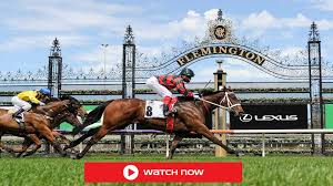 Watch Derby Day 2020 Live Stream and ...
