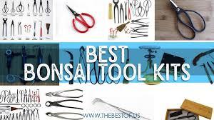 best bonsai tools for bonsai