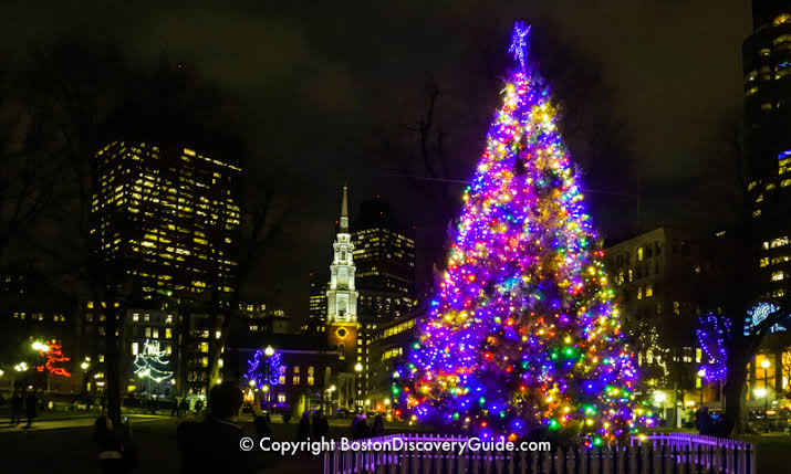 """Image result for image of a christmas tree with lights"""""""