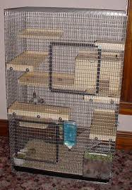 guidelines for chinchilla cages