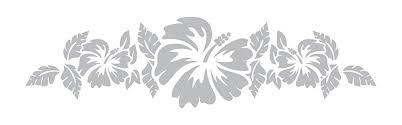 Amazon Com Hibiscus And Vine Motif Design 2 Coastal Design Series Etched Decal For Shower Doors Glass Doors And Windows 7 Tall X 28 Wide Custom Sizes Available Handmade