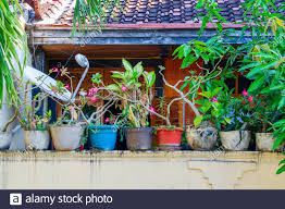 Flower Pots In A Row Stand On The Fence Decoration Of The Yard Home Courtyard Decor In Asia Bali Indonesia Stock Photo Alamy