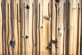 5 Maintenance Tips For Wooden Fences