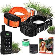 50 Best Wireless Dog Fence Systems In 2020 Reviews