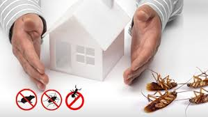 Remarkable Pest Control London and the Home Counties