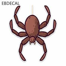 Ebdecal Black Widow Spider Car Bumper Window Wall Suitcase Decal Sticker Decals Diy Decor Ct8440 Car Stickers Aliexpress
