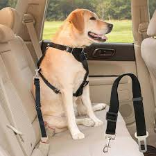 pet dog safety harnesses car seat belt