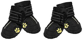 best dog boots in 2020 the genius review