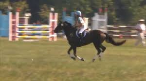 "Abbey Parrish ""Frisky Business"" Seneca Valley Pony Club Horse Trials XC/T  9/5/2015 - YouTube"