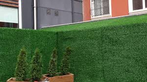 What Kind Of Grass Used For Grass Fence Panels