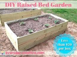 diy vegetable garden greenhouse