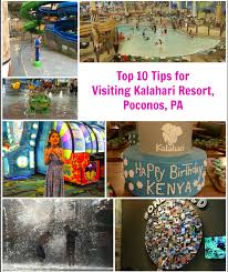 top 10 tips for visiting kalahari