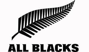 All Blacks Rugby Car Vinyl Sticker Decal Bumper Or Window Ipad Laptop 2 00 Picclick Uk
