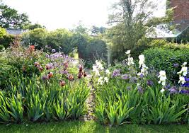 garden visit flower borders in a