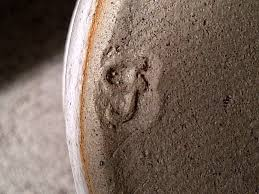 ID PLEASE ON THIS STONEWARE POT WITH LID.. LETTER CJ   Stoneware pot,  Pottery marks, Pottery