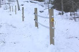 Fence Repair Gallagher Electric Fence Repair