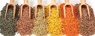 list of lentil s variety you will find