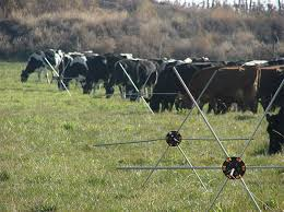 Friday Feature Tumblewheel Rolling Electric Fence Panhandle Agriculture