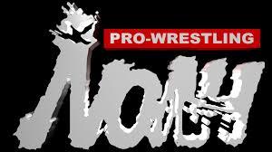 Pro-Wrestling NOAH e DDT Pro se tornarão uma única empresa