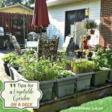 vegetable garden on a deck tips for