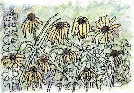 wilted flowers journey dancing