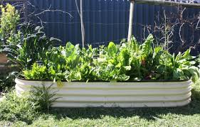 super easy vegie garden house nerd