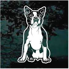 Rat Terrier Sitting Decals Car Window Stickers Decal Junky