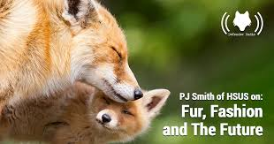 PJ Smith of HSUS on: Fur, Fashion and The Future | The Fur-Bearers -  Protecting Canadian Wildlife since 1953