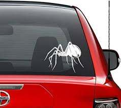 Amazon Com Deadly Black Widow Spider Vinyl Decal Sticker Car Truck Vehicle Bumper Window Wall Decor Helmet Motorcycle And More Size 5 Inch 13 Cm Wide Color Gloss Black Home Kitchen