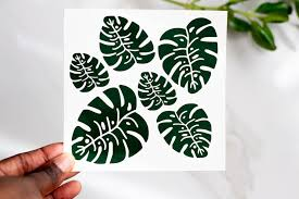 Monstera Vinyl Decal Waterproof Sticker Pack Coco And Seed