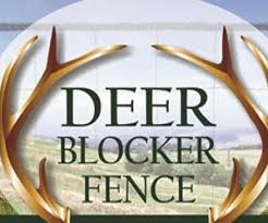 Why Use A Wireless Deer Fence Deer Antlers For Pups