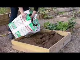 start a small vegetable garden in texas