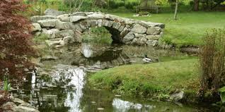 new england botanical gardens rose