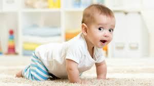 Trẻ 6 tháng tuổi tuần 1
