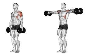 Exercise-2-Standing-Dumbbell-Lateral-Raises – Fitness Workouts & Exercises