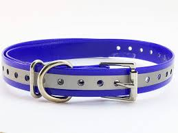 Trainpro Replacement Collar Strap Band With Double Buckle Loop For Garmin Delta Dogtra Sportdog Petsafe Petrainer Educator Sport Dog Training Pet Shock Bark E Collars And Invisible Fences Training Collars Training