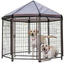 5 Best Outdoor Dog Kennels Canines Safe Outside 2020 Reviews