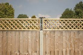 Pin By Katie Keyworth Craig On Garden Patio In 2020 Backyard Privacy Privacy Fence Designs Trellis Fence