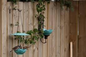 Diy Wall Mounted Bird Feeder And Bird Bath Offbeat Home Life