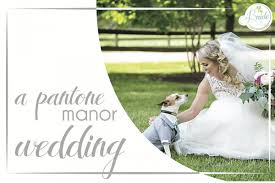 wedding casey travis adam mullins