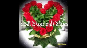 صباح الورد صباح الحب